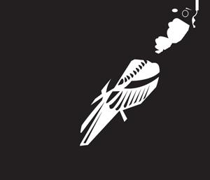 Bird - icon