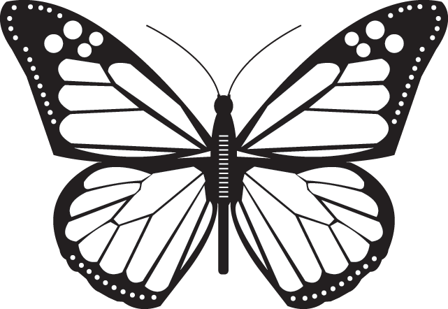 Butterfly - icon