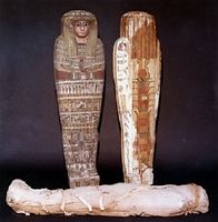A sarcophagus with the mummy of Lady Tahathor