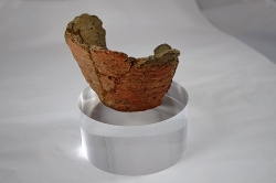 Neolithic grooved ware pot fragment