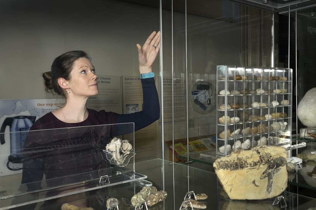 A colour photograph showing a white woman with brown hair closing the side of a glass display case. Inside the case are bones and fossils